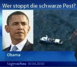 Wer stoppt die schwarze Pest?
